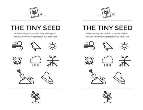 The Tiny Seed Worksheets Eric Carle