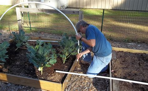 making a house how to build a hoop house modern farmer