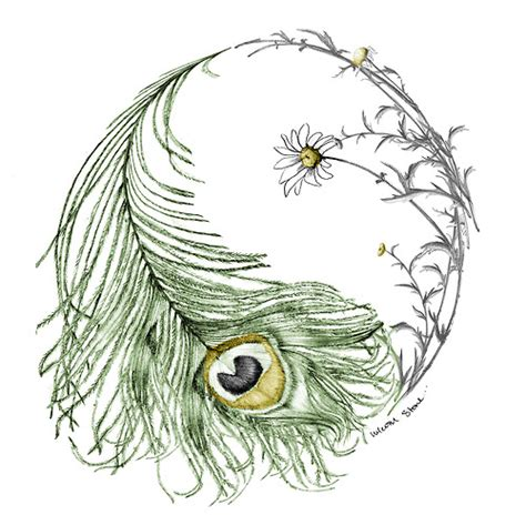 feather tattoo ying yang beautiful feather daisy yin yang may be the official