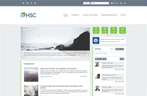 design inspiration hsc clean simple to navigate layout intranet inspiration