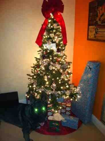 christmas tree guard dog german shepherd dog forums
