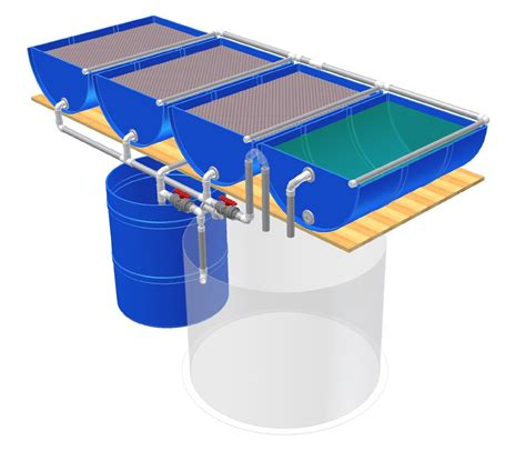 backyard aquaponics kits aquaponics design transitioning in anchorage aquaponics