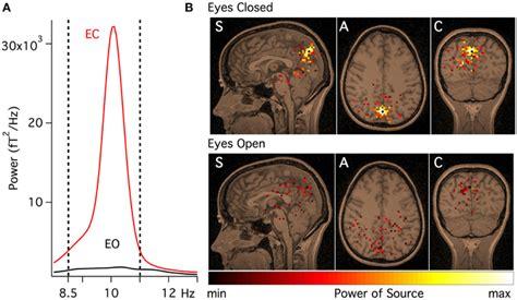 pattern analysis brain frontiers reconstruction of human brain spontaneous