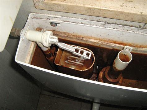 vasca scarico wc vasca di scarico water bricolageonline net