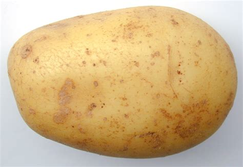 Potato Pictures by Potato