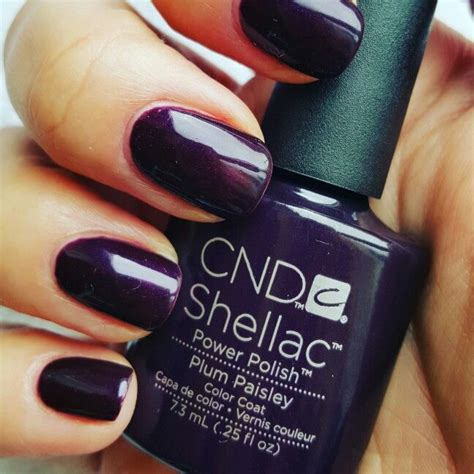 Most Popular Shellac Manicures | most popular right now shellac plum paisley nails