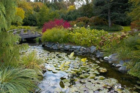 Rockford Botanical Gardens by Bridge And Pond With Koi Picture Of Klehm Arboretum