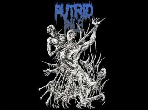 putrid pile food for the maggots youtube