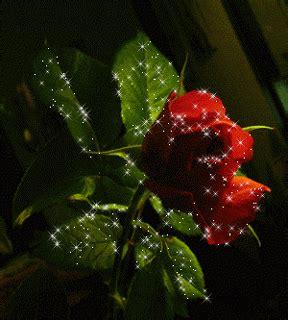 imagenes hermosas brillantes 4 rosas brillantes para facebook y google plus