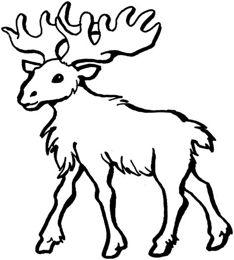 coloring book pages moose printable moose coloring pages coloring me