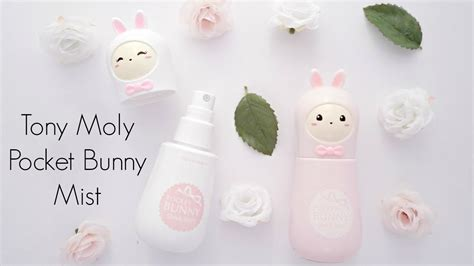 Harga Tony Moly Pocket Bunny Sleek Mist review tony moly pocket bunny mist