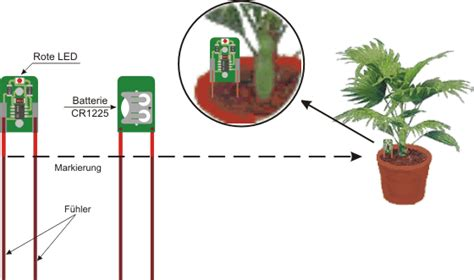wann beschäftigungsverbot blumenblinker giessanzeige f 252 r pflanzen