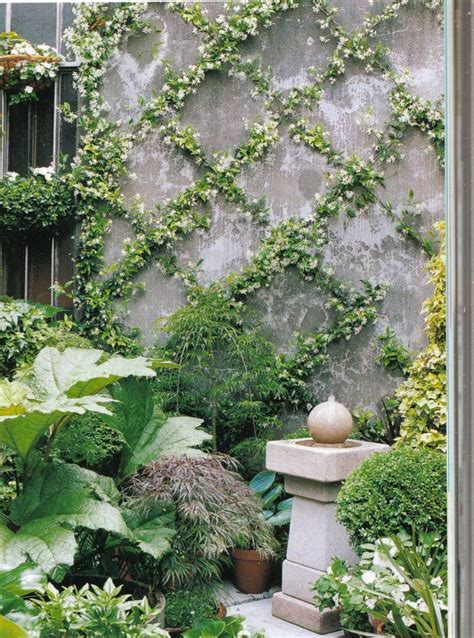 Landscaping Ideas Vines Zig Zag On A Wall Garden Designs