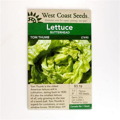 lettuce cardinale seeds lt seeds arts nursery