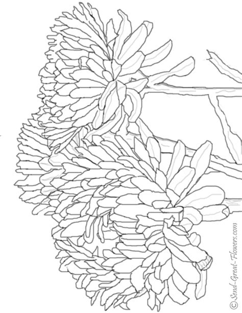 Fall Coloring Pages Coloring Ville Fall Coloring Pages For Adults