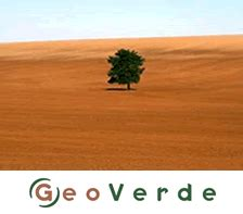 geoverde helping a world of business grow