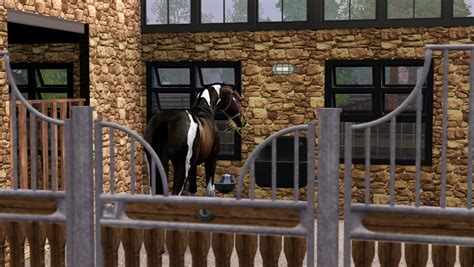 How Do I Get A Blueprint Of My House new horse pure spirit horses