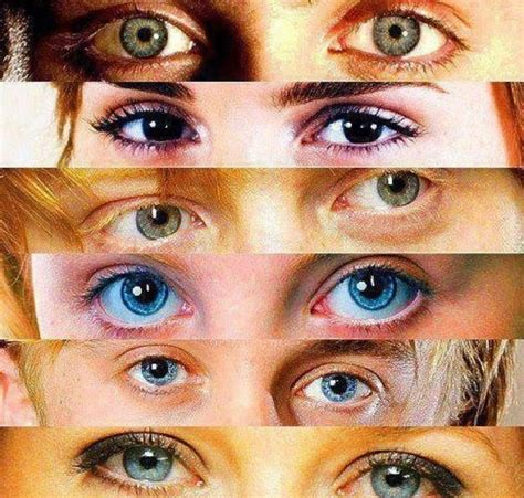 harry potter eye color harry potter hermione granger ronald weasley lovegood
