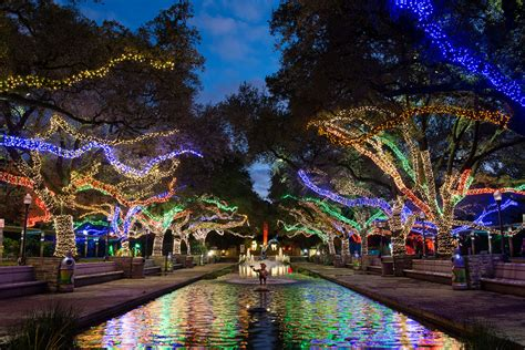 Houston Zoo Txu Energy Presents Zoo Lights Zoo Lights Zoo Lights In Houston