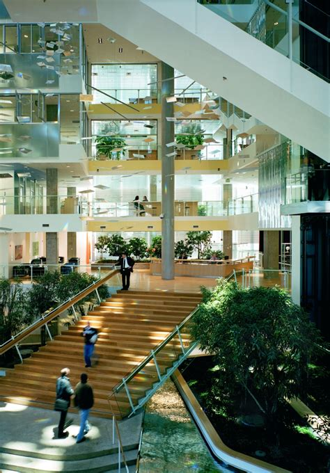 environmental lighting for architecture what is and is not biophilic design