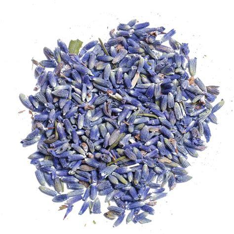 Lavender Buds lavender flower buds edible lavender buds the spice house