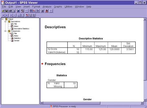 spss output viewer window the gallery for gt nominal measurement