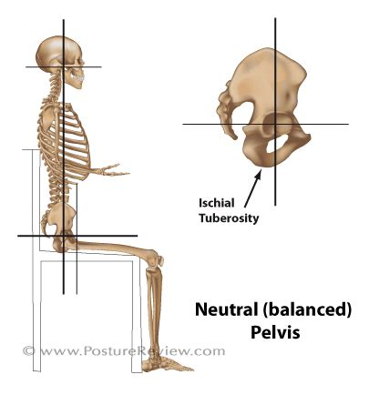 hip hurts after sitting on floor orthopedic pelvic health physical therapy and