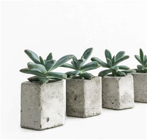 Concrete Succulent Planter | set of 5 concrete hex micro planters succulent planter