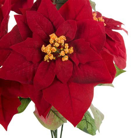 21 quot color fast poinsettia bush 5 flowers 81622rd