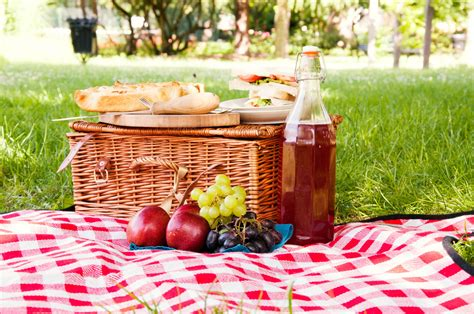 The Ideal Picnic Get It On The High Now by Skin Picnic Blanket Content Gallery Extravagant
