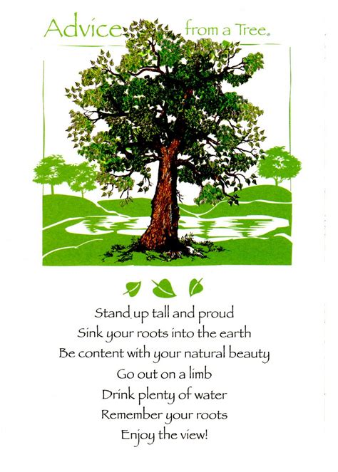 a cherry tree poem advice from a tree birthday and words to live by capricious yogi