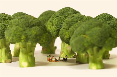 Home Interior Design Magazines Tatsuya Tanaka Miniature Calender Art People Gallery