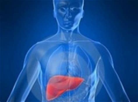 alimenti per fegato ingrossato fegato