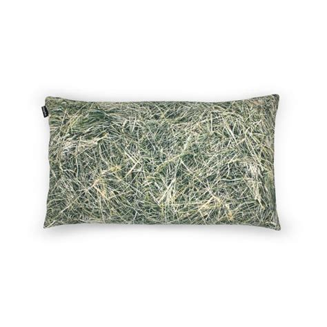 Hull Pillow by Hay Pillow Filled With Buckwheat Hull No W 243 Dka Shop