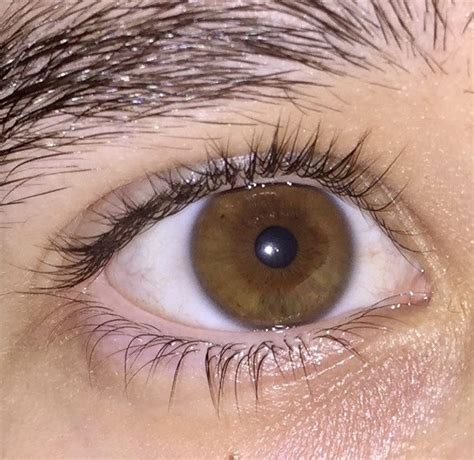 what does my eye color what color are your quora