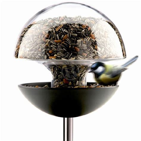 Stylish Bird Feeder Stylish Bird Feeder Cox Garden Designs