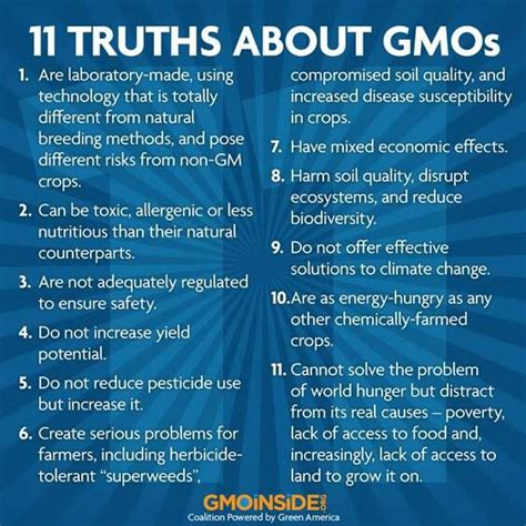 How To Detox Your From Gmos And Pesticides by Truths About Gmos Banned Food Food