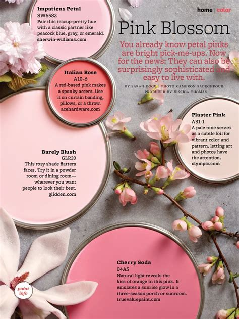 Kids Bedroom Painting Ideas paint palette pink blossom interiors by color