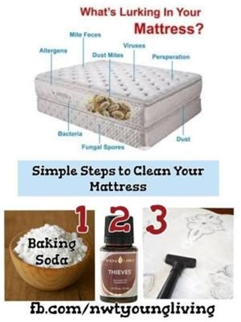 How To Clean A Mattress Of Bed Bugs by 1000 Ideas About Dust Mites On Dust Mite