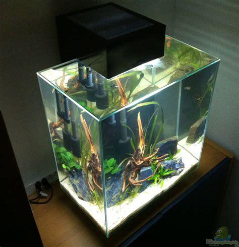 fluval edge 2 beleuchtung aquarium flightsim nano fluval edge ii