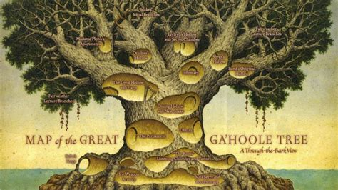 7 trees that look great in both the fall and the winter maps guardians of ga hoole wiki fandom powered by wikia
