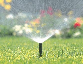 How To Start Landscaping Your Yard Sprinkler Repair In Spokane Call 509 977 4841 For Service