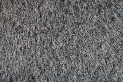 Warm Home Decor by Animal Gray Fur Texture As Wallpaper Or Background Stock