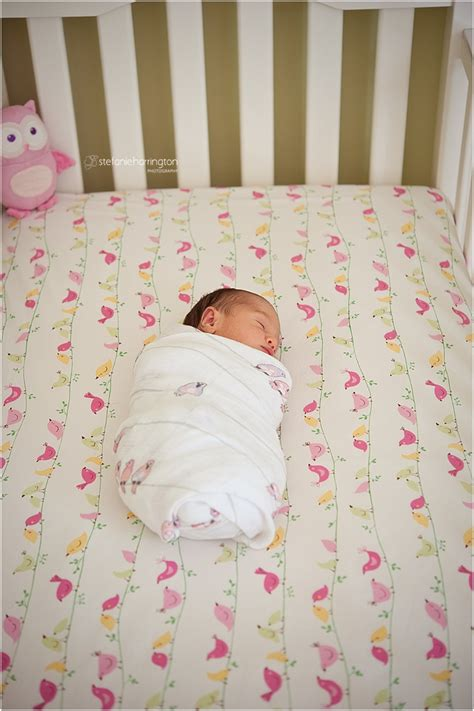 Babies Sleeping In Crib Baby Birds Newborn Photographer Washington Dc 187 Dc Area