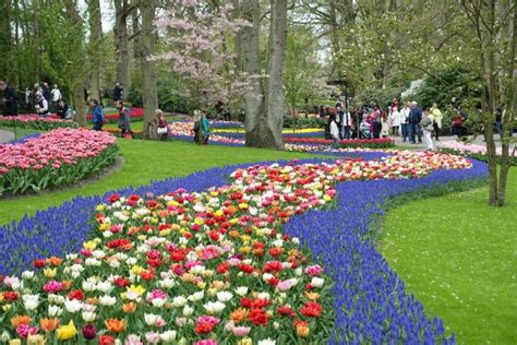 beautiful flower gardens of the world 10 of the most beautiful gardens around the world oyster
