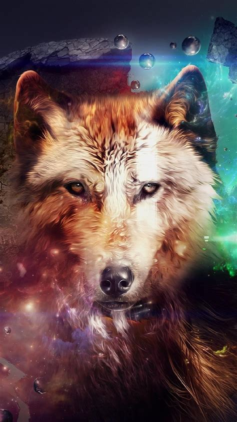 wallpaper iphone 5 wolf wolf free iphone wallpapers my hd wallpapers com
