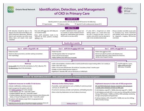Ckd Clinical Process Map Ontario Stroke Network Chronic Care Management Template 2017