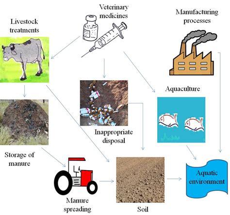 pathways valdemar books veterinary antibiotics in the environment intechopen