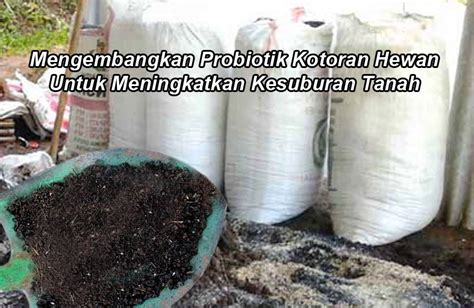 Pupuk Organik Kandang Sapi cara fermentasi pupuk kandang tanpa em4