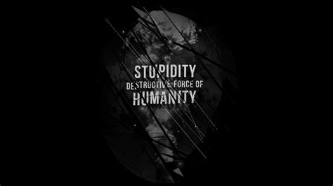 design by humans womens stupidity t shirt by nicebleed design by humans